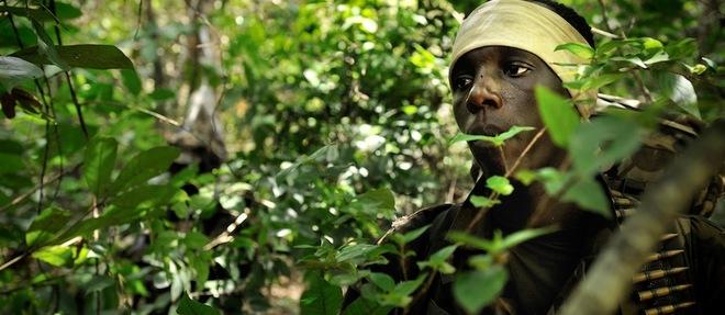Afrique-Antiterrorisme : dans la brousse, à la poursuite de Joseph Kony