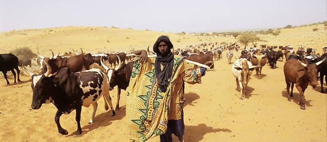 Afrique : les Peuls se sont-ils radicalisés ?