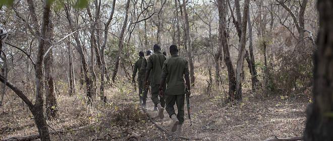 Français disparus au Bénin : quelle est la situation sécuritaire dans la région ?