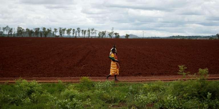 Le Zimbabwe ordonne l'évacuation des fermes illégalement occupées