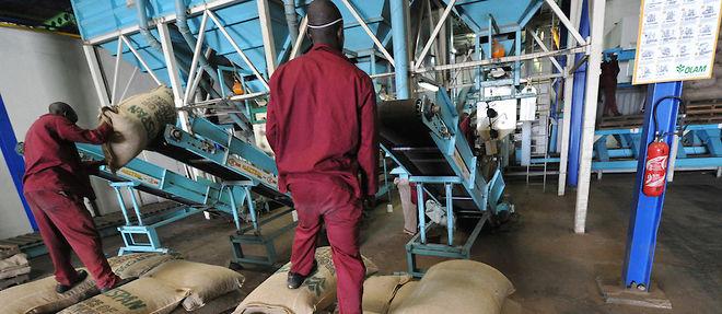 Ces fraudes à l'export qui coûtent si cher à l'Afrique