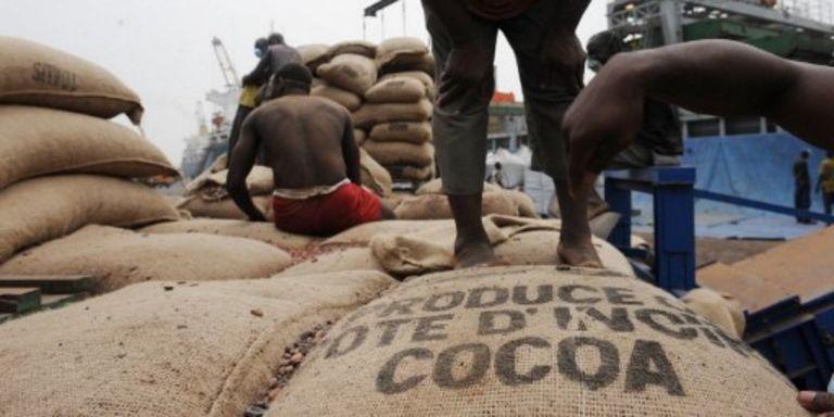 ENTRETIEN / Côte d'Ivoire : « Ce qui a fait chuter les cours du cacao, c'est la spéculation »