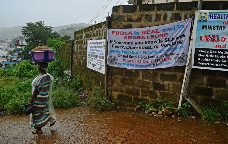 L'OMS craint 20 000 cas d'Ebola d'ici novembre
